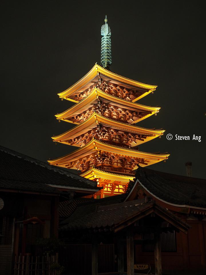 IMAGE: http://monk3y.zenfolio.com/img/s8/v85/p1773049150-6.jpg
