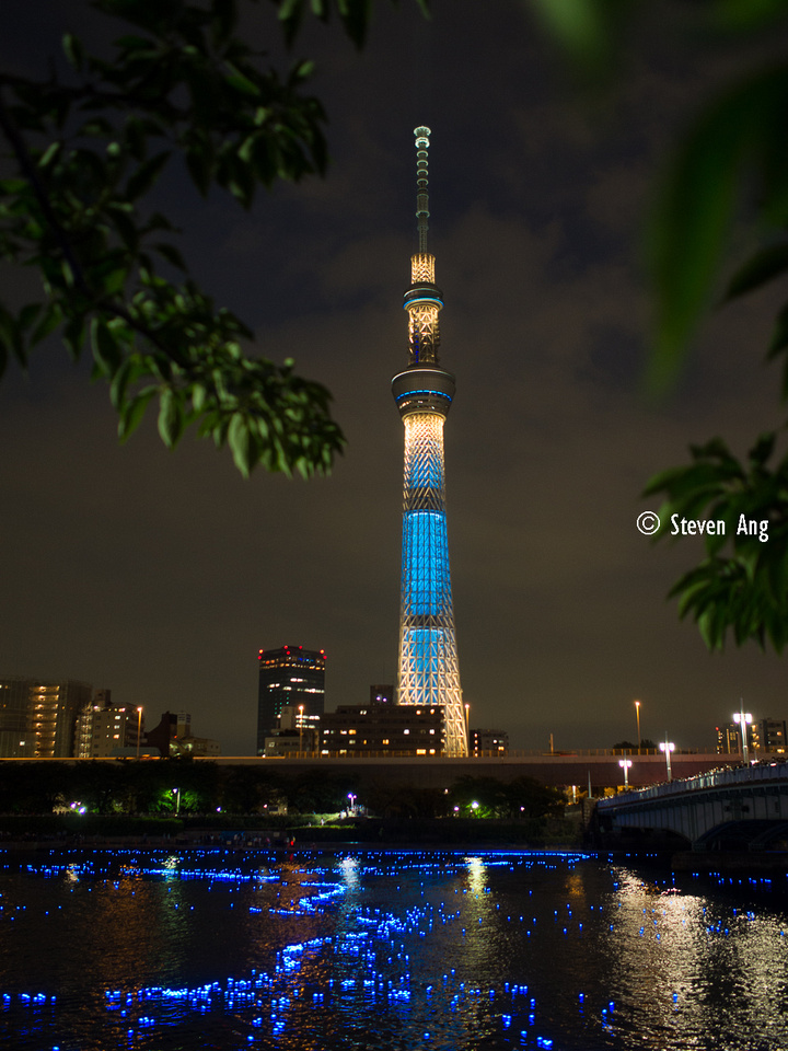 IMAGE: http://monk3y.zenfolio.com/img/s9/v92/p1865196893-6.jpg